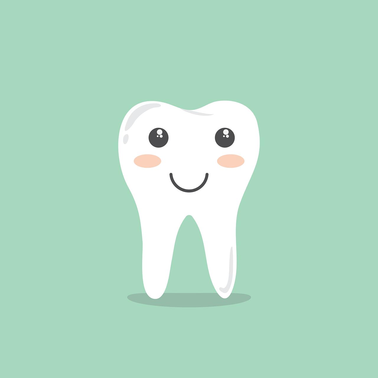 Zahnpflege Hunde und Katzen Virbac